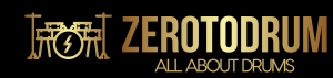 Zerotodrum Color Logo With Background